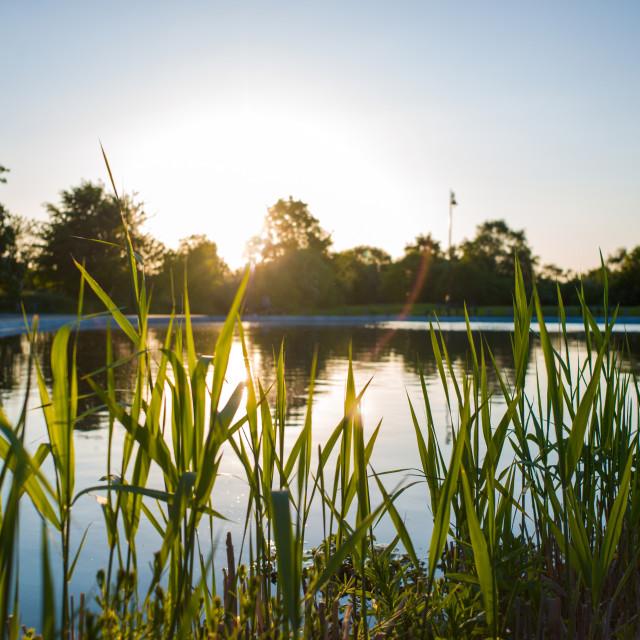 """Sunset at Whitestone Pond"" stock image"