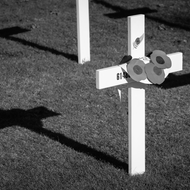 """""""Field of Remembrance"""" stock image"""