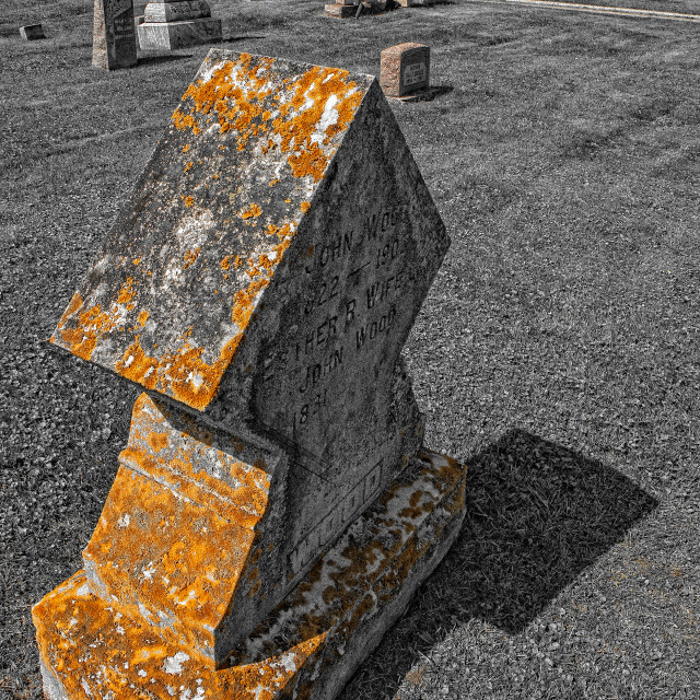 """""""Moss on the Tombstone"""" stock image"""