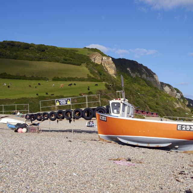 """Branscombe Beach"" stock image"