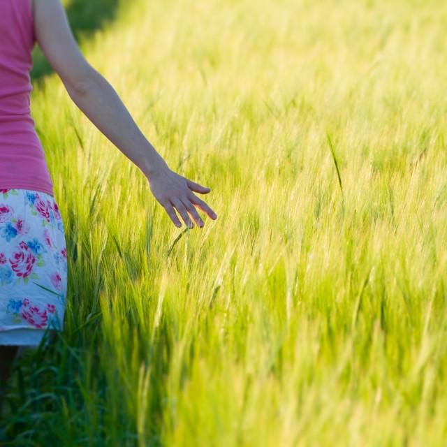 """Woman in Barley Field Closeup"" stock image"