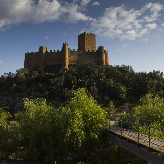 """""""Castle of Almourol"""" stock image"""
