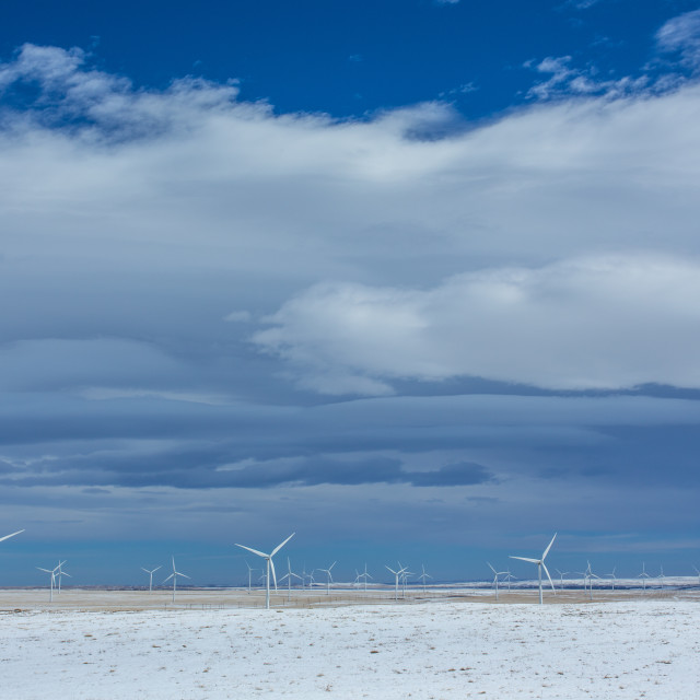 """Wind turbines in winter wheat fields"" stock image"