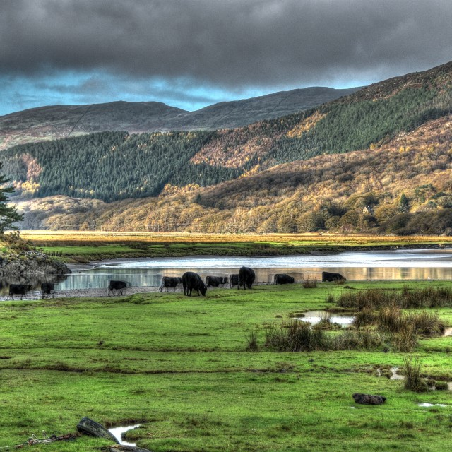 """The Mawddach river estuary in North Wales"" stock image"