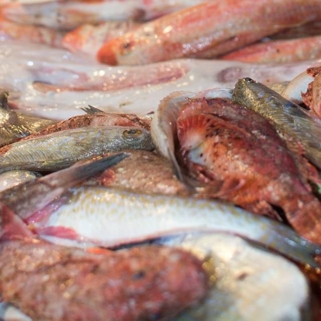 """Fresh fish market"" stock image"