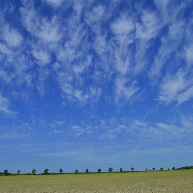 """Clouds across a field"" stock image"