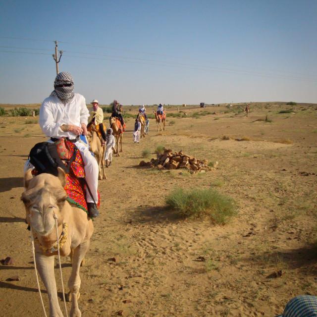 """Desert camel trekking, Rajasthan"" stock image"