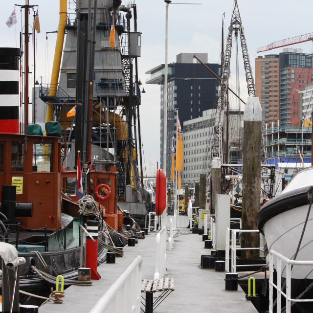 """Leuvehaven, Rotterdam"" stock image"