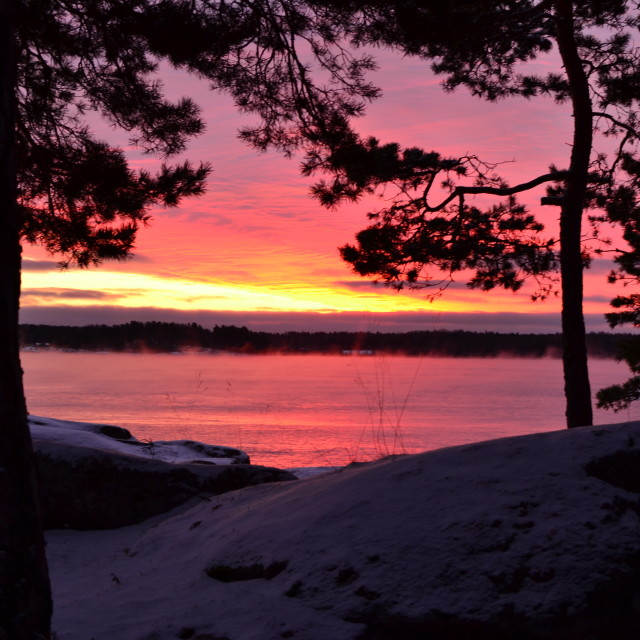 """Sunrise in Sweden"" stock image"