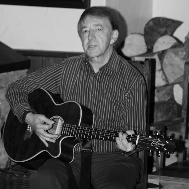 """Blues Guitarist"" stock image"