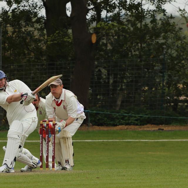 """Cricket match"" stock image"