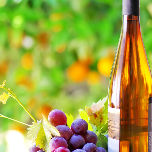"""""""Grapes and wine bottle"""" stock image"""