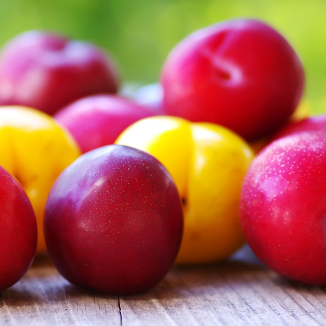 """Ripe plums on wooden table"" stock image"