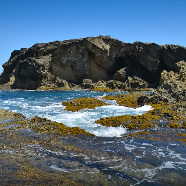 """""""Natural pool and rock formations at Punta Palmas Altas. Barceloneta, Puerto Rico."""" stock image"""