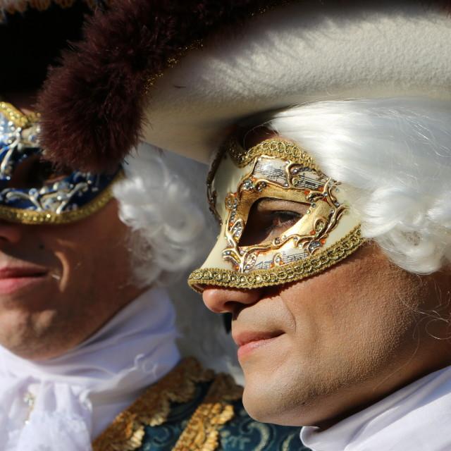 """""""Venice Carnival of 2015"""" stock image"""