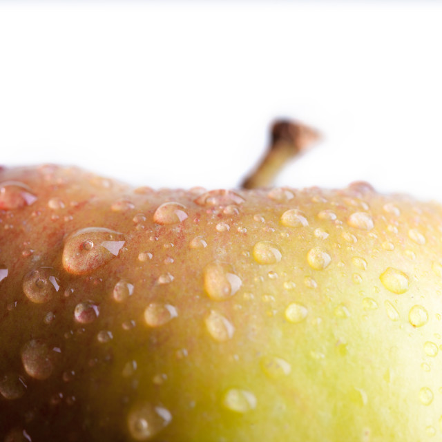 """Close-up of an apple"" stock image"