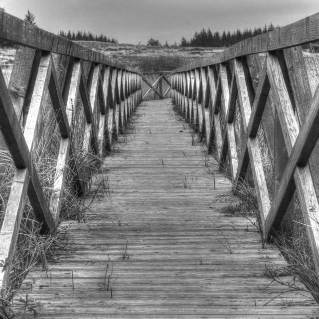 """""""Footbridge at Finlaggan"""" stock image"""