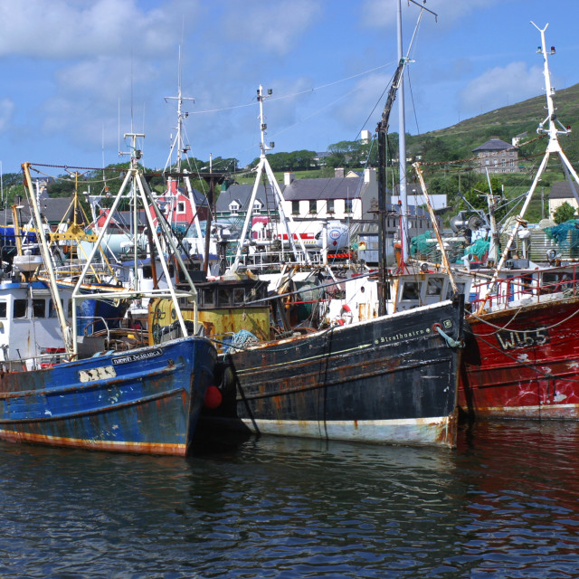 """Fishing Boats in Dingle Harbour"" stock image"