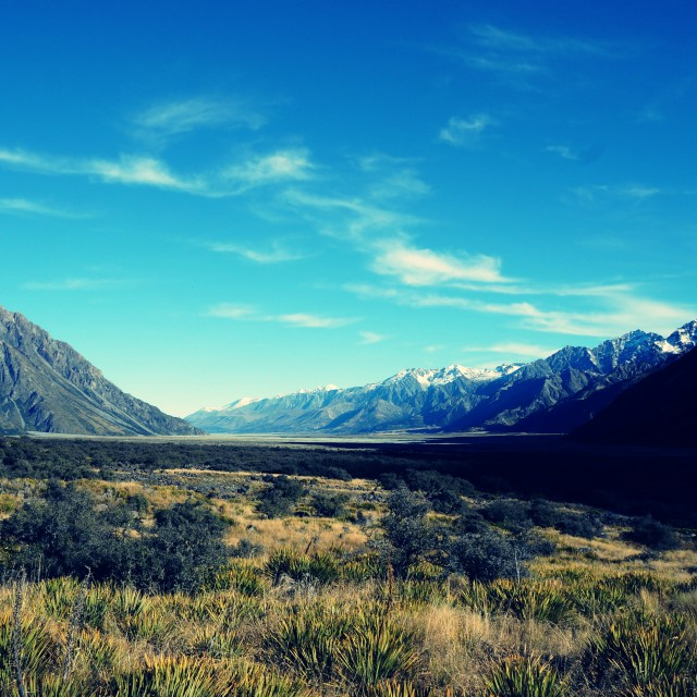 """grass field before Mt Cook"" stock image"