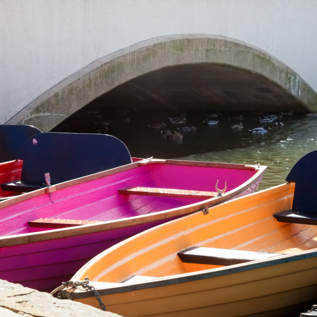 """""""Rowing Boats"""" stock image"""
