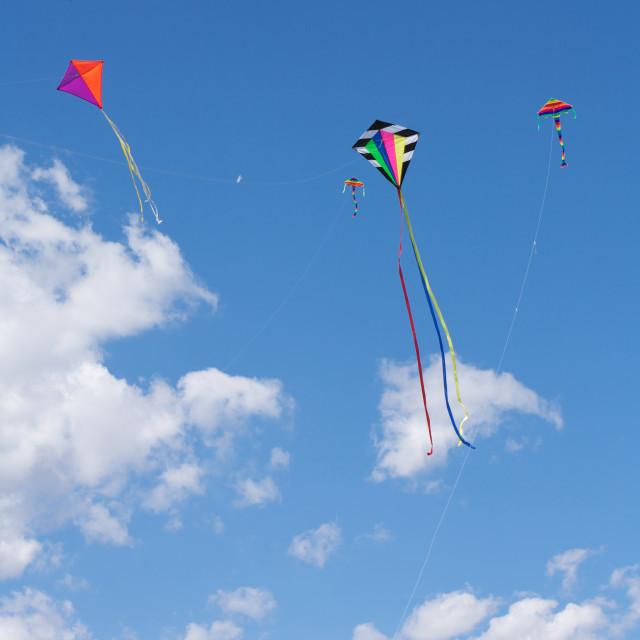 """Kites Flying"" stock image"