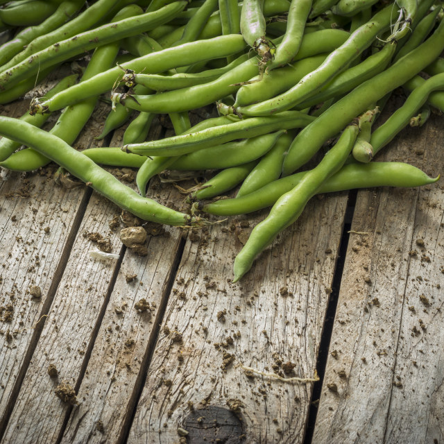 """Green beans on the table"" stock image"