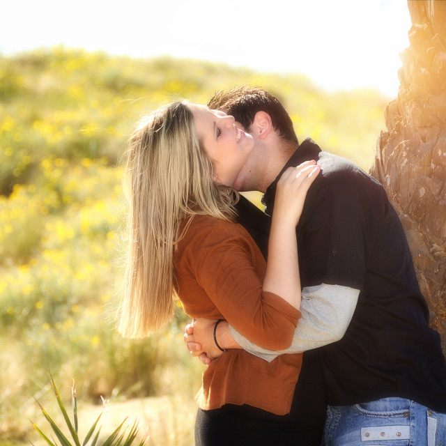 """Lovers kissing in the field under a plam"" stock image"