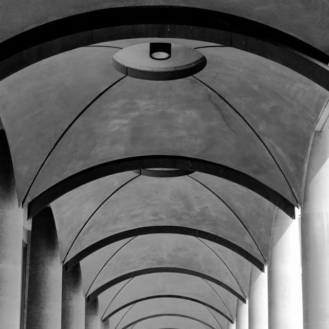 """""""Concrete Canopies"""" stock image"""