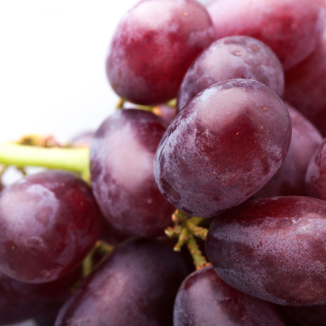 """Red Grapes"" stock image"