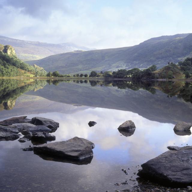 """""""Llyn Gwynant, Snowdonia, Wales"""" stock image"""