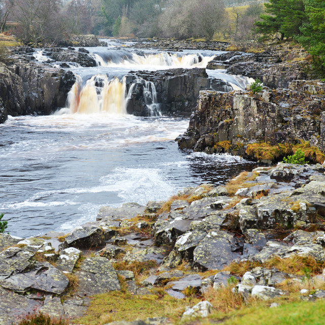 """""""Low Force, Upper Teesdale"""" stock image"""