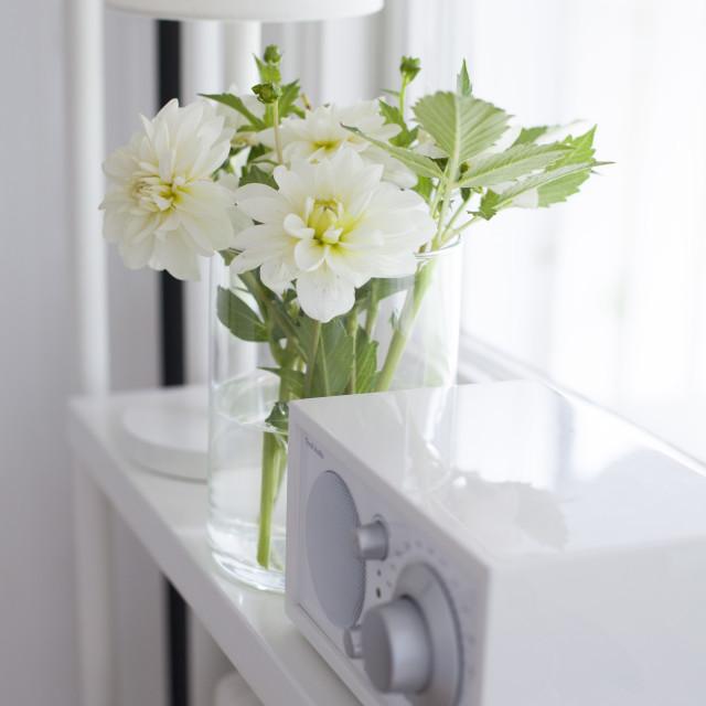 """White dahlias"" stock image"
