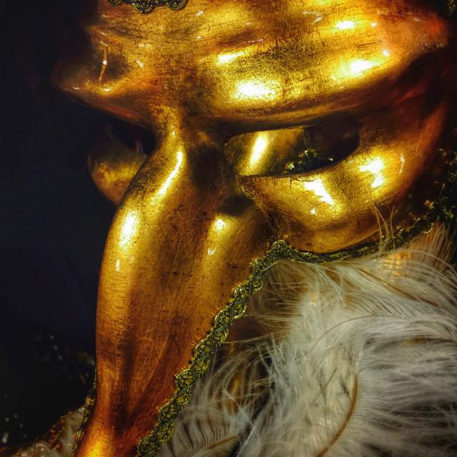 """Mardi Gras Gold"" stock image"