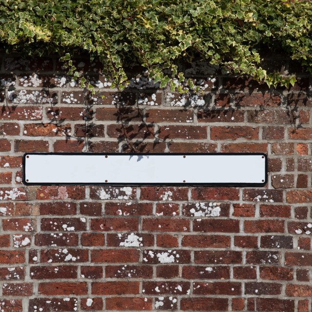"""Blank street sign"" stock image"