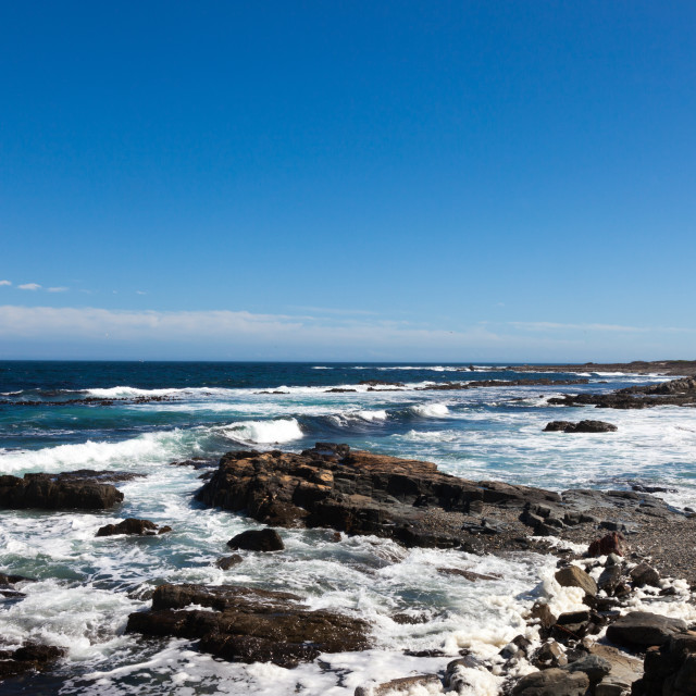 """Robben island South Africa Coastline"" stock image"