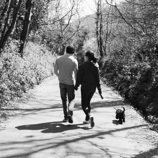 """Romantic Walk"" stock image"