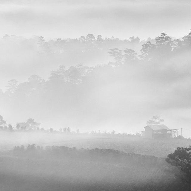 """Little House on the Prairie Dalat, Vietnam"" stock image"