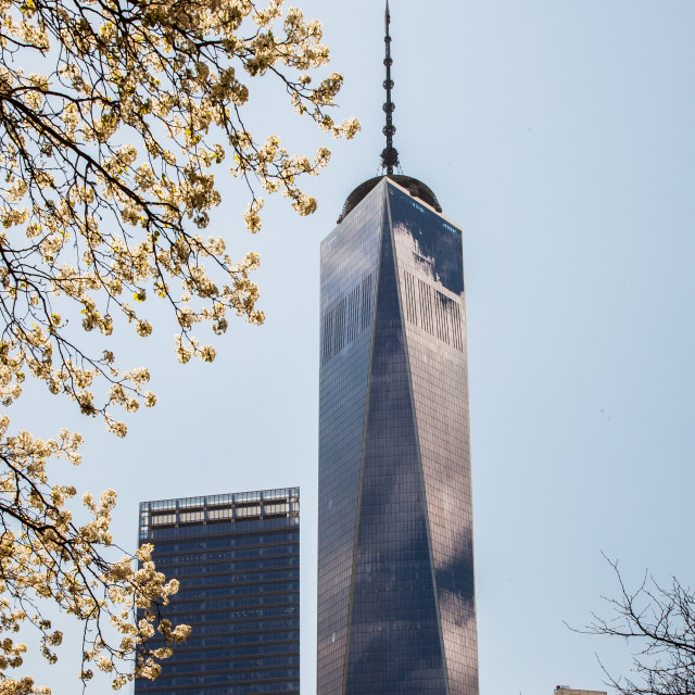"""One World Trade center, Ground Zero, NYC"" stock image"
