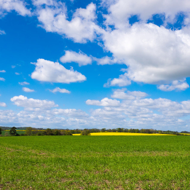 """Fields set against a beautiful sky"" stock image"