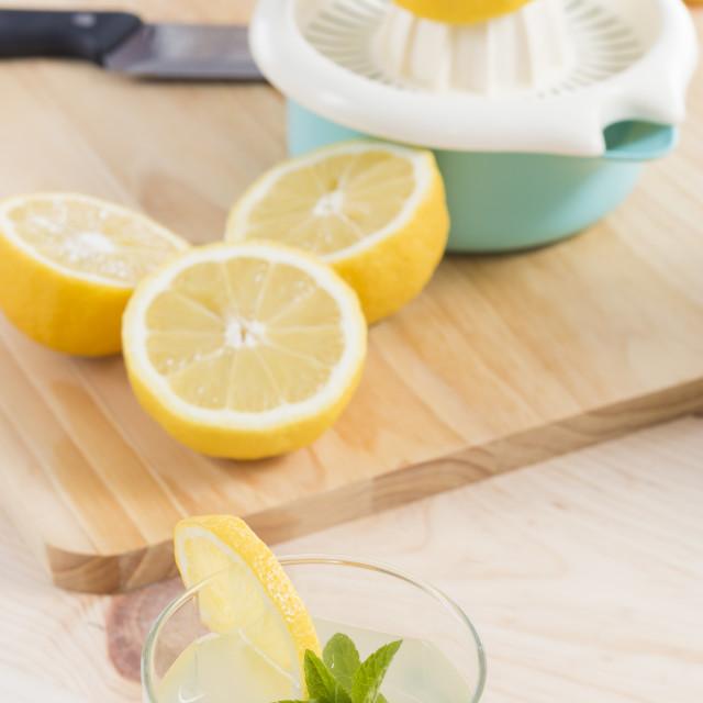 """Lemonade just squeeze"" stock image"