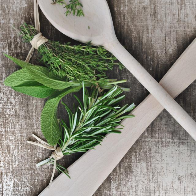 """aromatic herbs"" stock image"