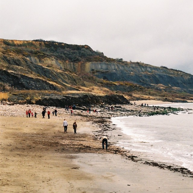 """The Lyme Regis coastline"" stock image"