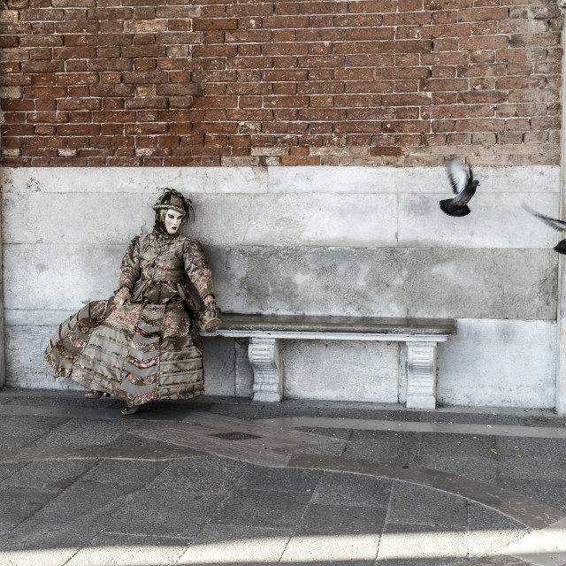 """Carnival of Venice in Italy"" stock image"