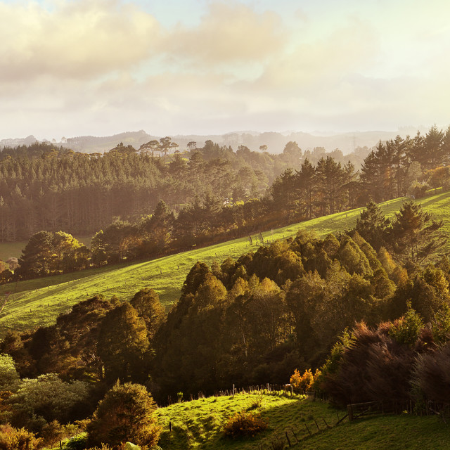 """Morning sun in the valley"" stock image"