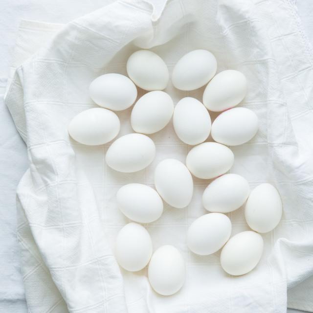 """Eggtastic!"" stock image"