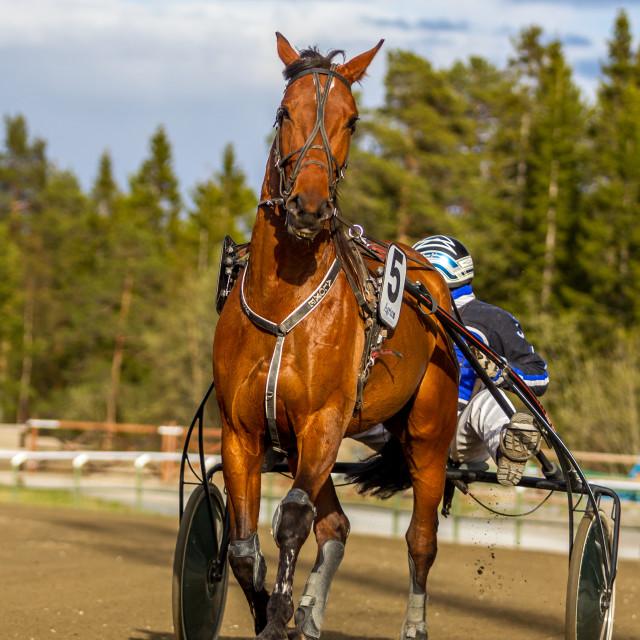 """Travet Östersund"" stock image"