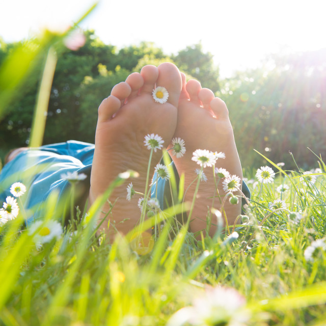 """Children's feet in the grass"" stock image"