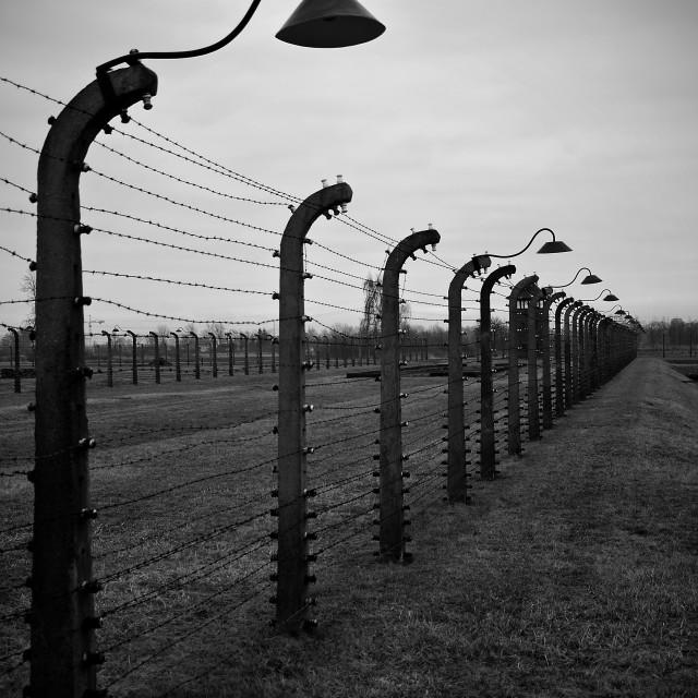 """""""Boundary fence, Birkenau."""" stock image"""