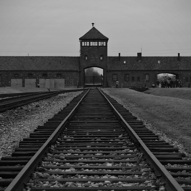 """""""Birkenau."""" stock image"""