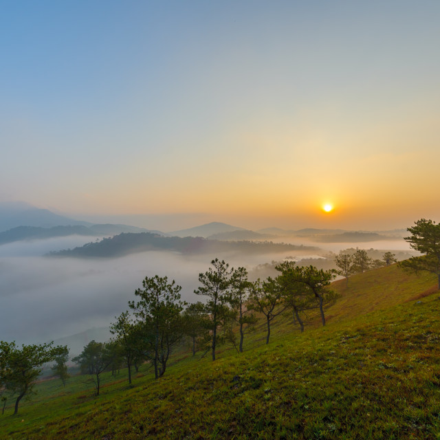 """A foggy morning at Dalat City, Lam Dong Province, Vietnam"" stock image"